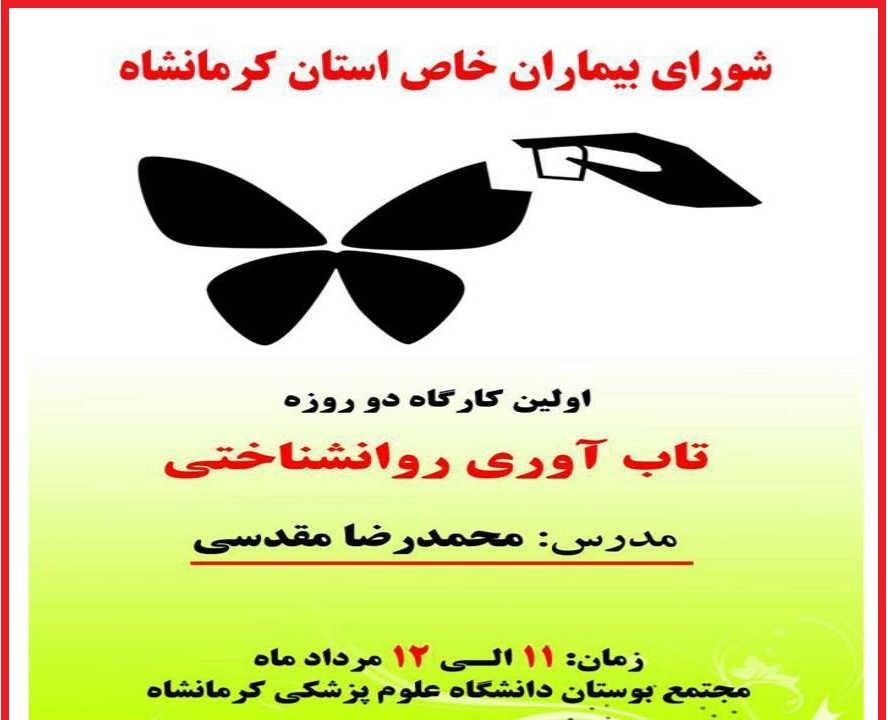 iran resilience workshop
